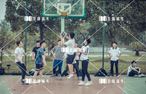 艺考生机构组织篮球赛