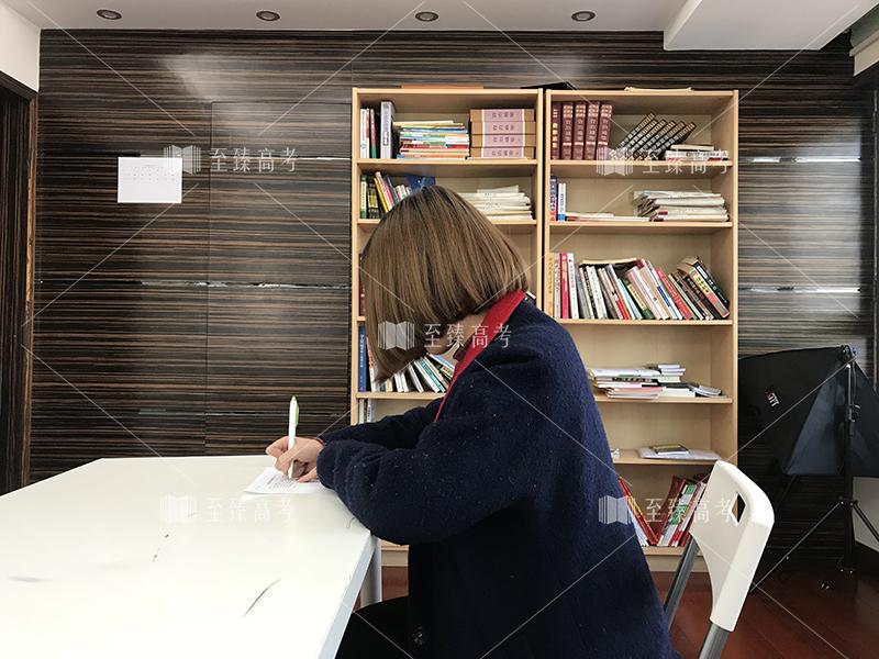 武汉艺考生文化课辅导培训机构