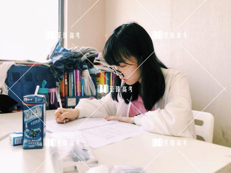武汉艺术生课后复习 冲刺文化