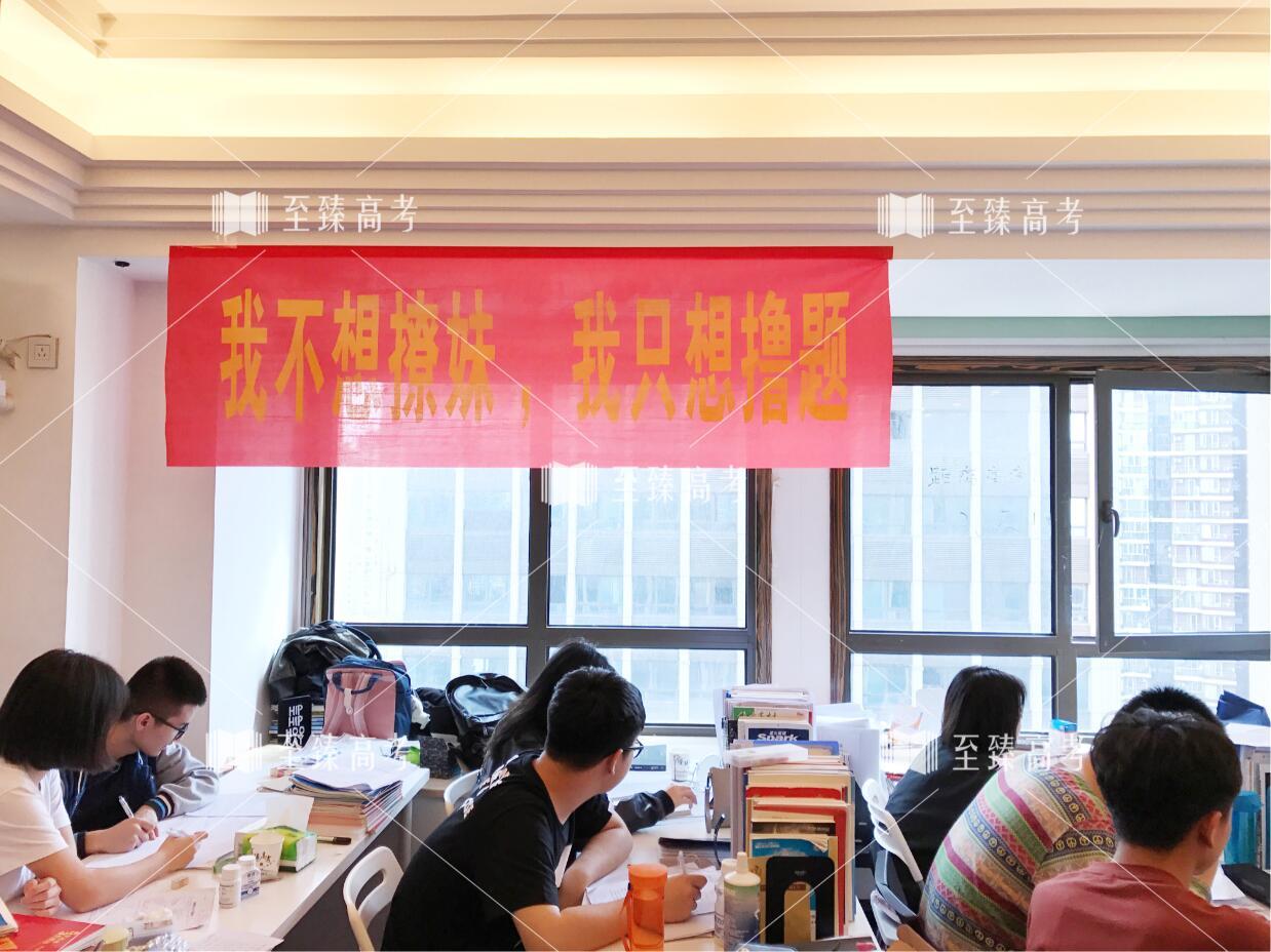 武汉艺考生文化课冲刺集训营